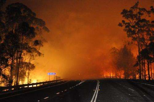 Call for merit-based funding as bushfire research money runs out