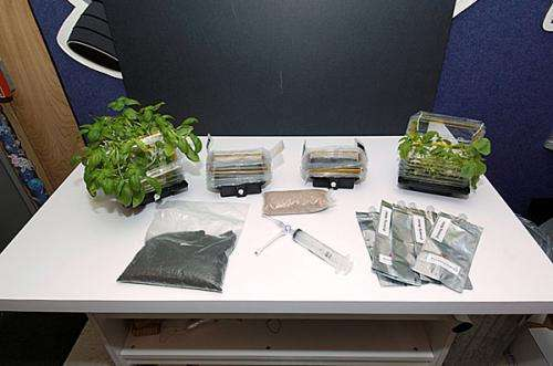 Can plants grow on the moon? NASA plans test in 2015