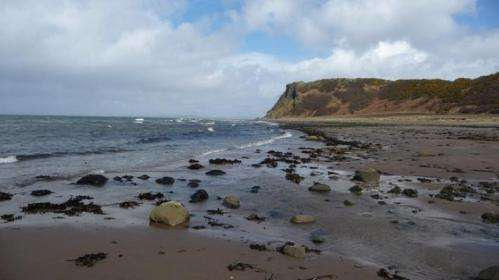 Caution needed when considering emerging methods for monitoring beach pollution