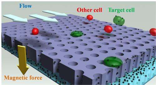 Cell-detection system promising for medical research, diagnostics