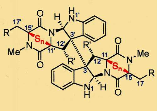 Chemists find help from nature in fighting cancer