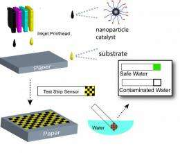 Chemist to bring low-cost, inkjet-printed nano test strips to Pakistan for drinking water tests