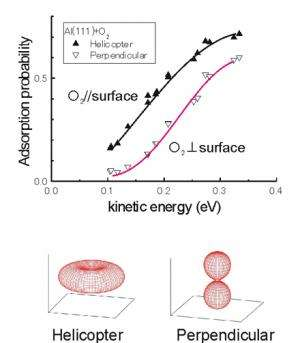 Clarification of dynamical process of aluminum surface oxidation