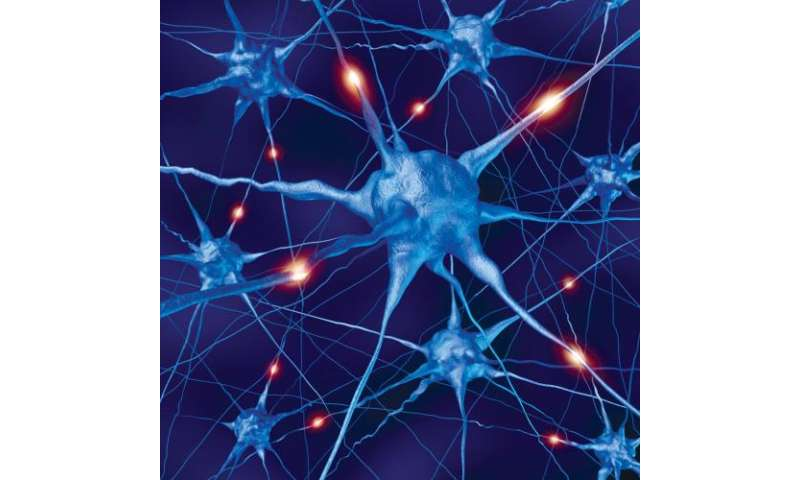 Competing impairment of neurons governs pathology of a severe form of epilepsy