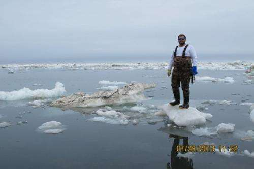 Conducting cool summer research in the Arctic