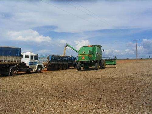 Contemplating the Brazilian dilemma: Abundant grain/inadequate storage