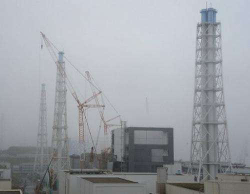 Covers are installed for a spent fuel removal operation at Japan's Fukushima plant on June 12, 2013
