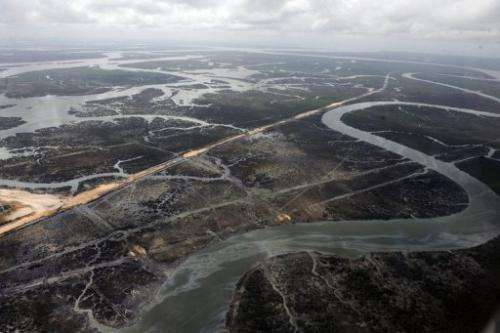 Creeks devastated by spills caused by oil thieves in the Niger Delta in Nigeria, March 22, 2013.