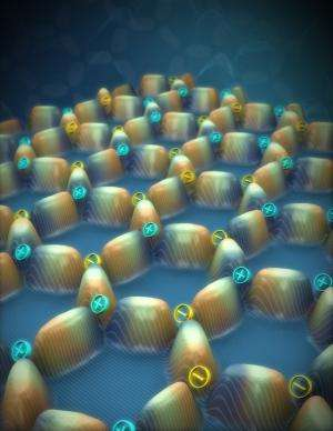 Magnetic charge crystals imaged in artificial spin ice