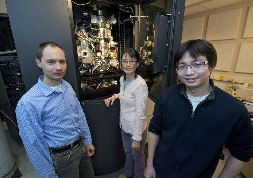 Discovery points to new approach to fight dengue virus
