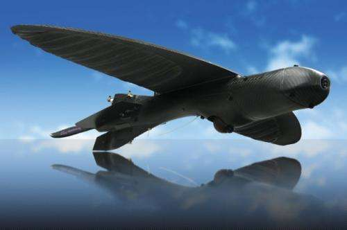 DoD to get camouflaged bird-sized drones for recon missions