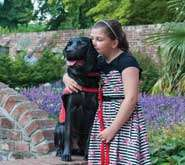 Dogs could act as effective early-warning system for patients with diabetes