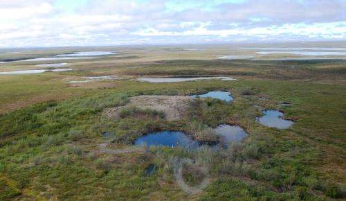 Drilling for hydrocarbons can impact aquatic life