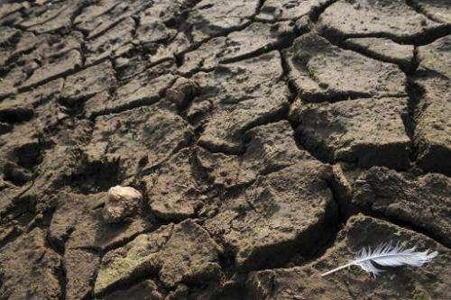 Dry soil at the Drennec lake near Sizun, western France, on November 25, 2011