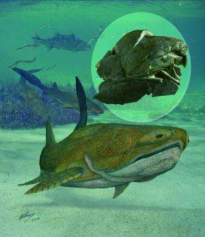 Fish fossil yields jaw-dropping data on Man's past