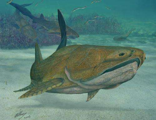 Extraordinary 'missing link' fossil fish found in China