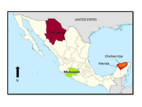 Face-to-face: Skull study shows variation of pre-columbian cultures in Mexico