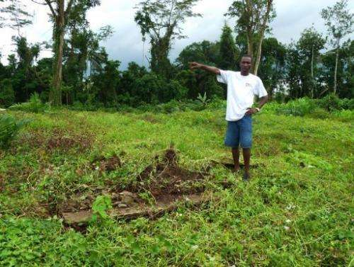 Farmer Benedict Smarts, pictured on December 12, 2012, at the Indonesian Golden Veroleum concession in southern Liberia