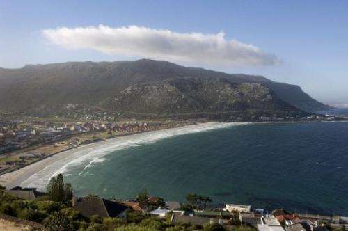 Fish Hoek beach has seen several violent shark attacks over recent years