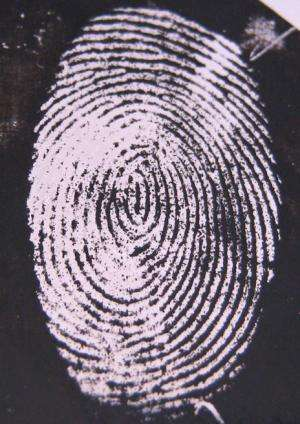 Fluorescent fingerprint tag aims to increase IDs from 'hidden' prints on bullets and knives