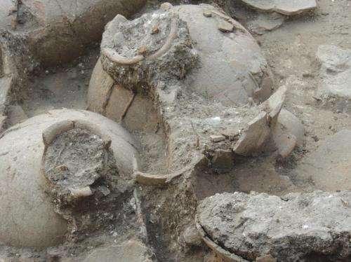 Found: 1 of civilization's oldest wine cellars?