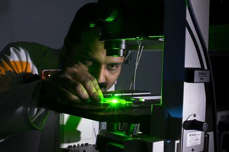 Gold 'nanoprobes' hold the key to treating killer diseases