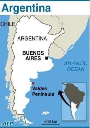 Graphic map showing the location of Peninsula Valdes in Argentina