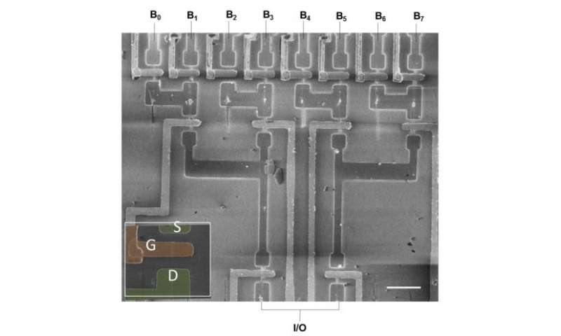 Guided growth of nanowires leads to self-integrated circuits