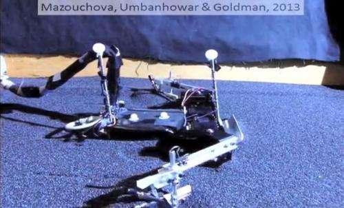 Sea turtles inspire beach-walking robot (w/ video)