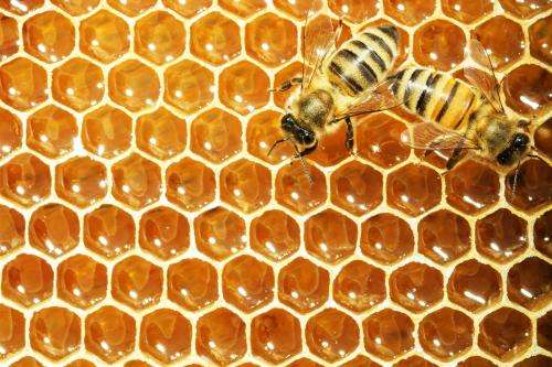 Honey may not be advisable to those who live with diabetes