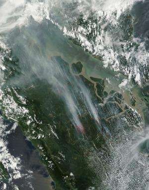 Illegal fires set in Indonesia cause smog problem