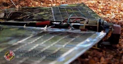 Robo Raven: Robotic bird that harvests solar energy (w/ video)