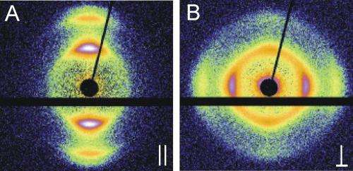 Particles changing angle: Unexpected orientation in capillaries