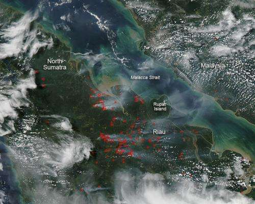 Land-clearing Blazes in Indonesia
