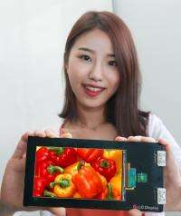 LG display develops world's first Quad HD LCD panel for smartphones