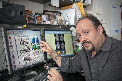 Lights, chemistry, action: New method for mapping brain activity