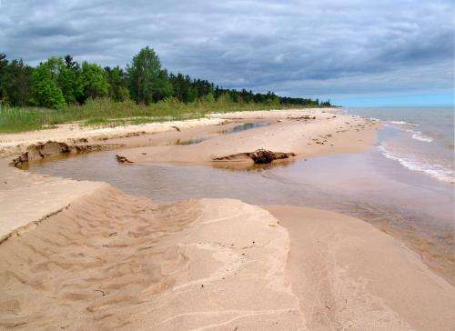 Limited food may be significantly changing Great Lakes ecosystems