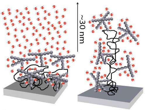 Long distance calls by sugar molecules
