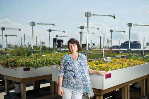 Making green roofs greener