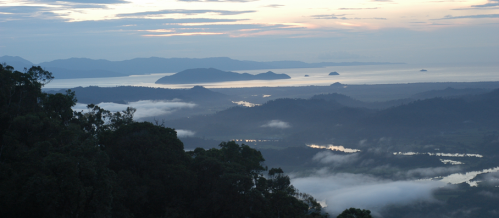 Massive carbon credit sale announced in Madagascar
