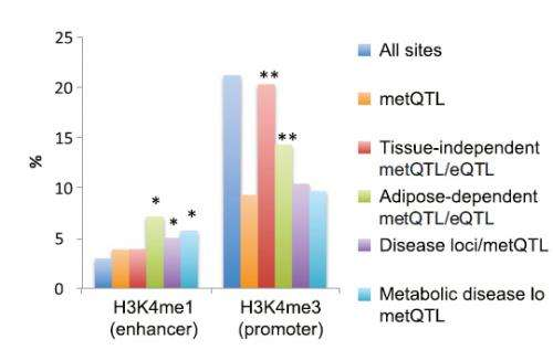 Methylation linked to metabolic disease