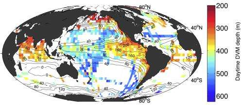 Migrating animals add new depth to how the ocean 'breathes'