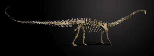 Misty the dinosaur skeleton heads to Denmark