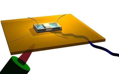 Molecules pass through nanotubes at size-dependent speeds