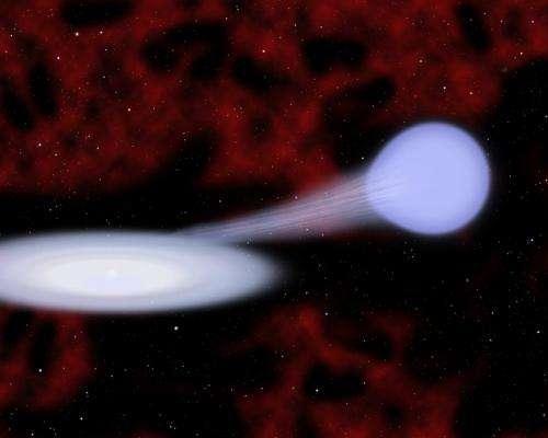 Music of the spheres: Star songs