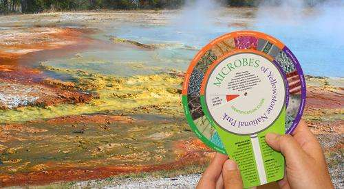 New guide, color wheel help Yellowstone visitors identify microbes in hot springs