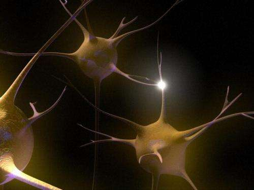 Observing brain activity during learning errors