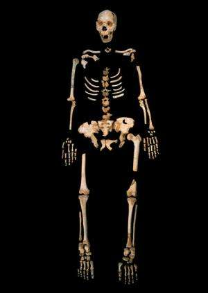 Oldest hominin DNA sequenced