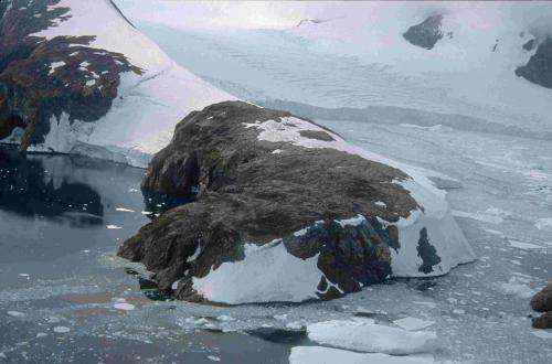 On warming Antarctic Peninsula, moss and microbes reveal unprecedented ecological change