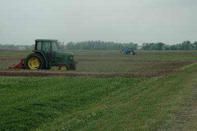 Organic rice research moves to front burner in Texas